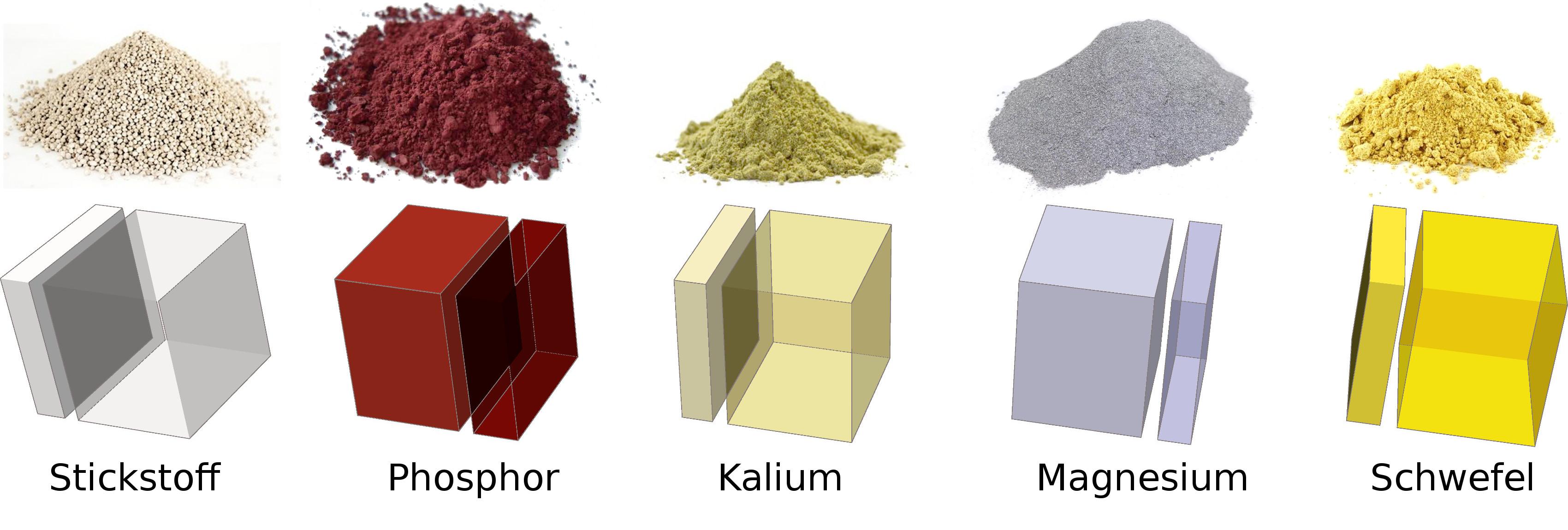 Bild charakteristische Aufteilung der Nährstoffe